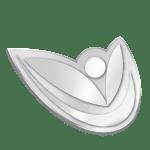 2_Silver