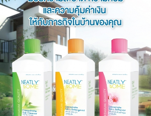 Concentrate Liquid Detergent (ผลิตภัณฑ์ซักผ้าสูตรเข้มข้น)