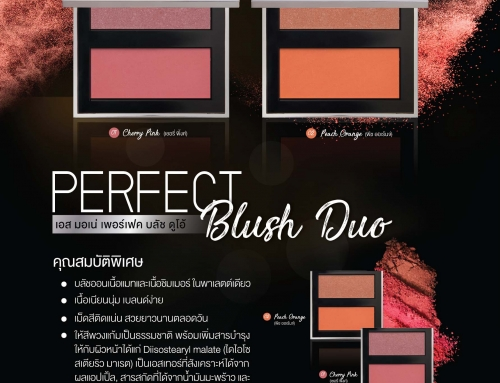 S MONE' Perfect Blush Duo (บลัชออน)